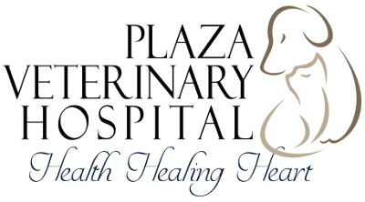 Plaza Veterinary Hospital